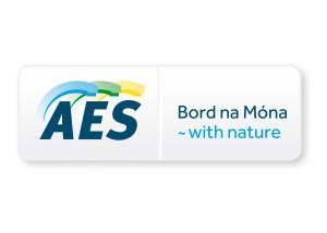AES_BNM logo